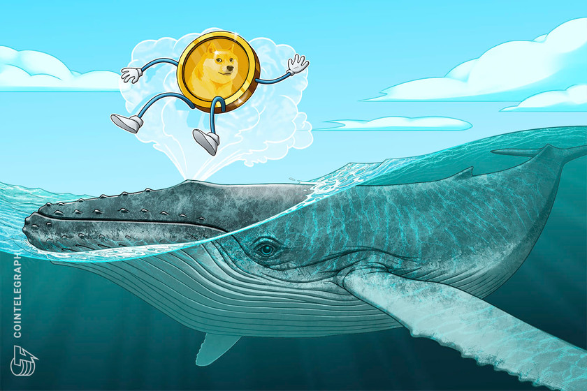 only whales move doge data suggests major dogecoin wealth gap